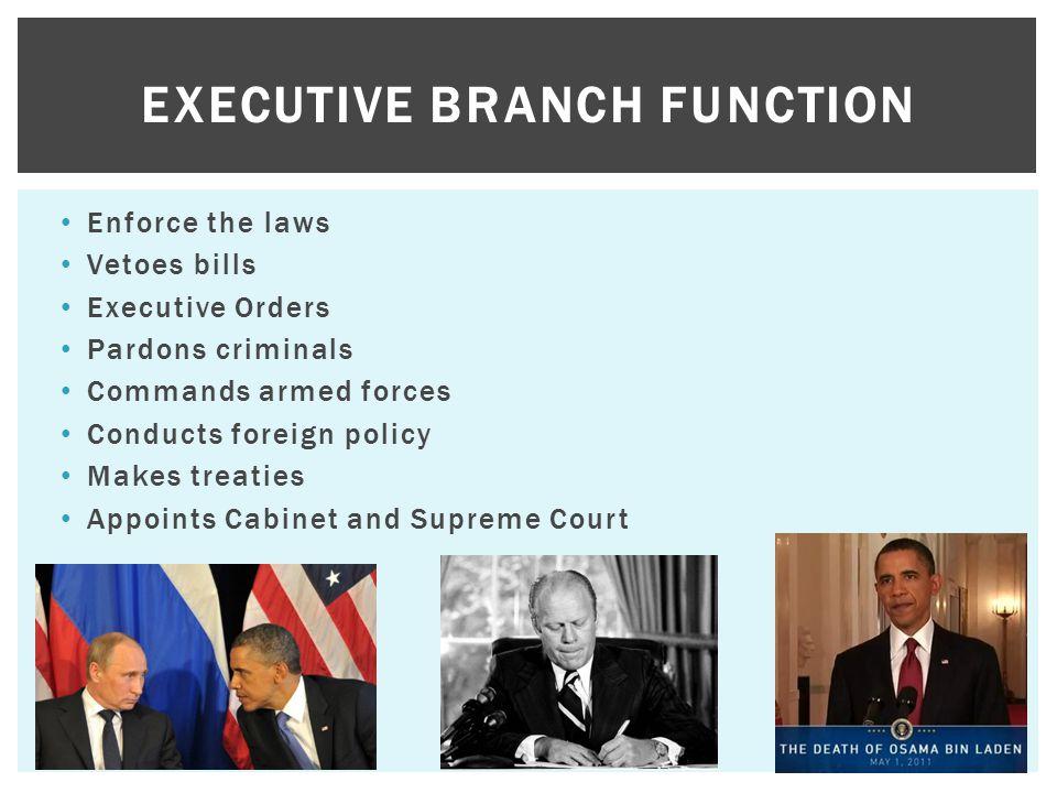 Executive Branch Function
