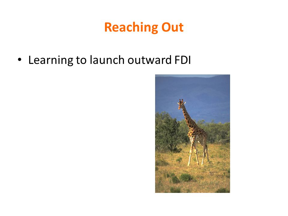 Reaching Out Learning to launch outward FDI