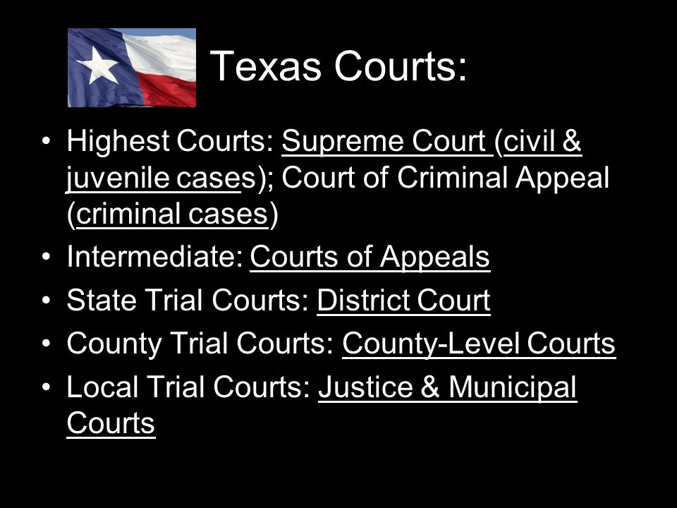 Texas Courts: Highest Courts: Supreme Court (civil & juvenile cases); Court of Criminal Appeal (criminal cases)