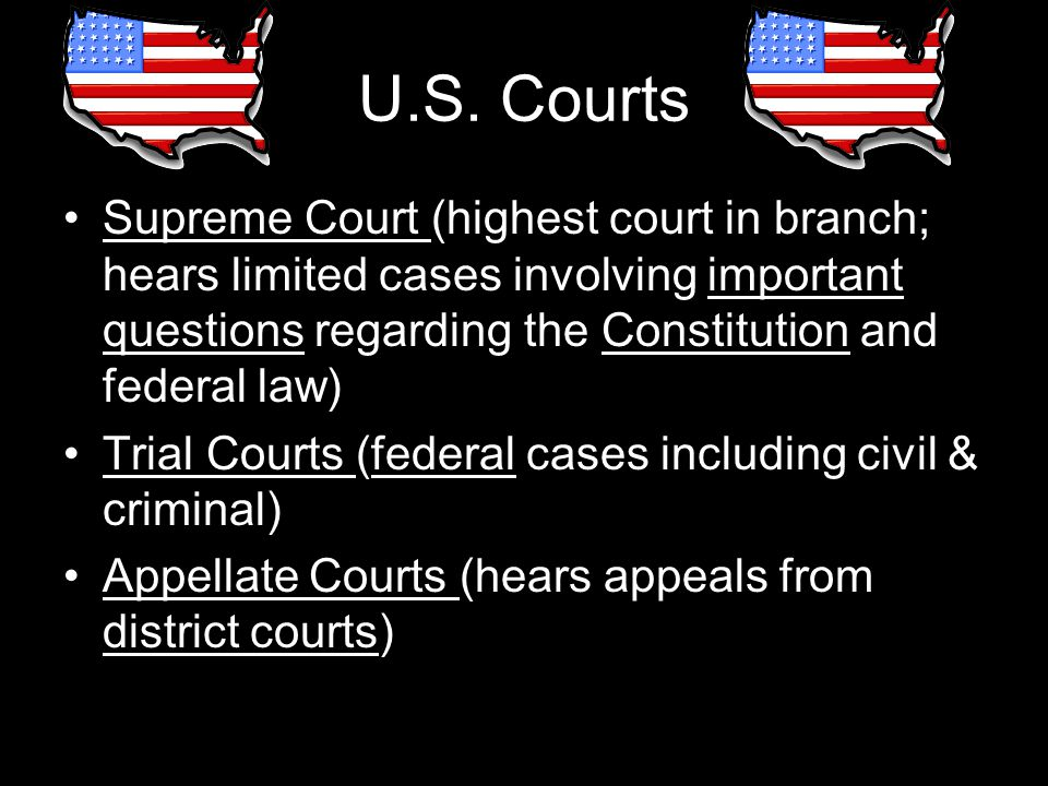 U.S. Courts Supreme Court (highest court in branch; hears limited cases involving important questions regarding the Constitution and federal law)