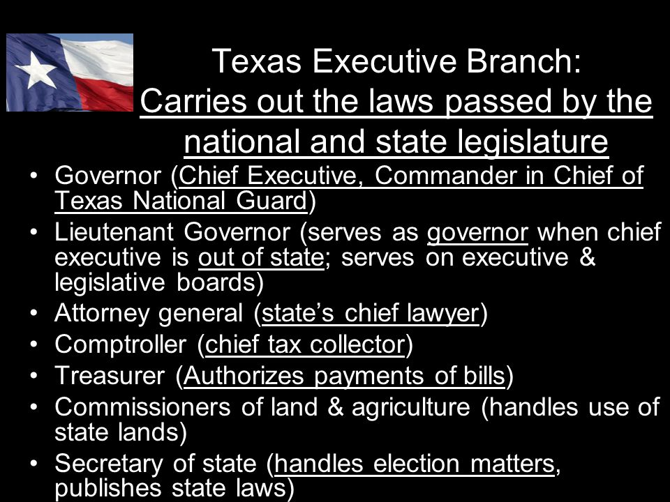 Texas Executive Branch: Carries out the laws passed by the national and state legislature