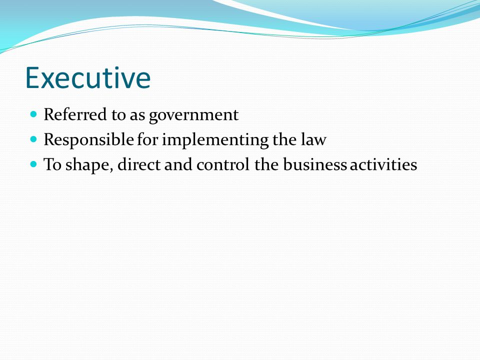 Executive Referred to as government