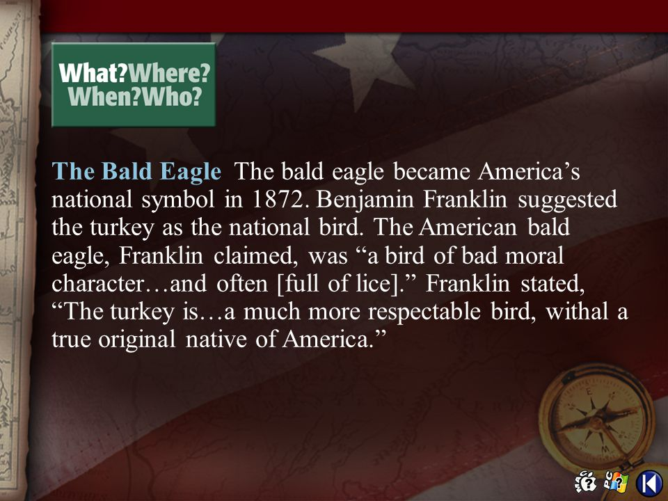 The Bald Eagle The bald eagle became America's national symbol in 1872