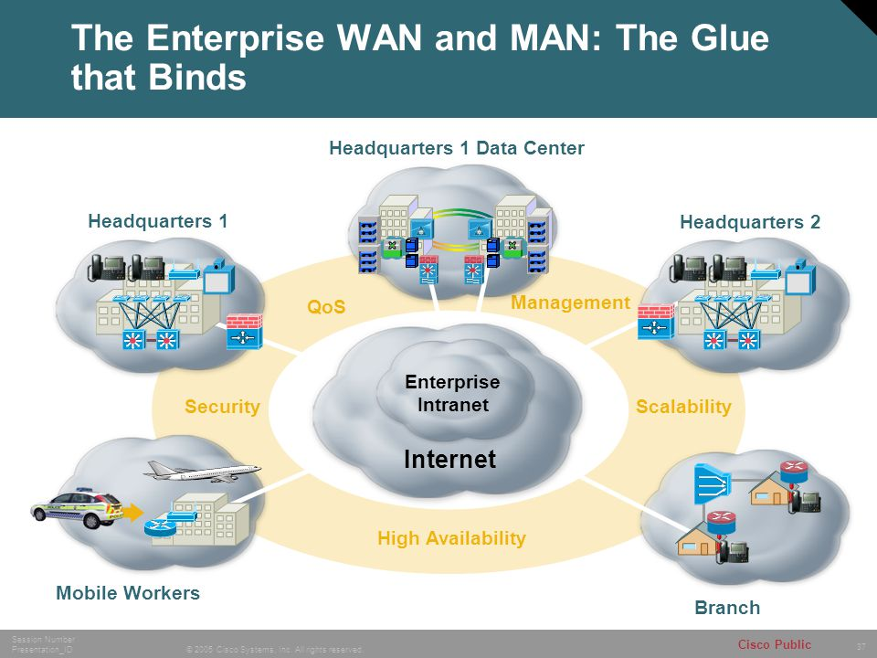 The Enterprise WAN and MAN: The Glue that Binds
