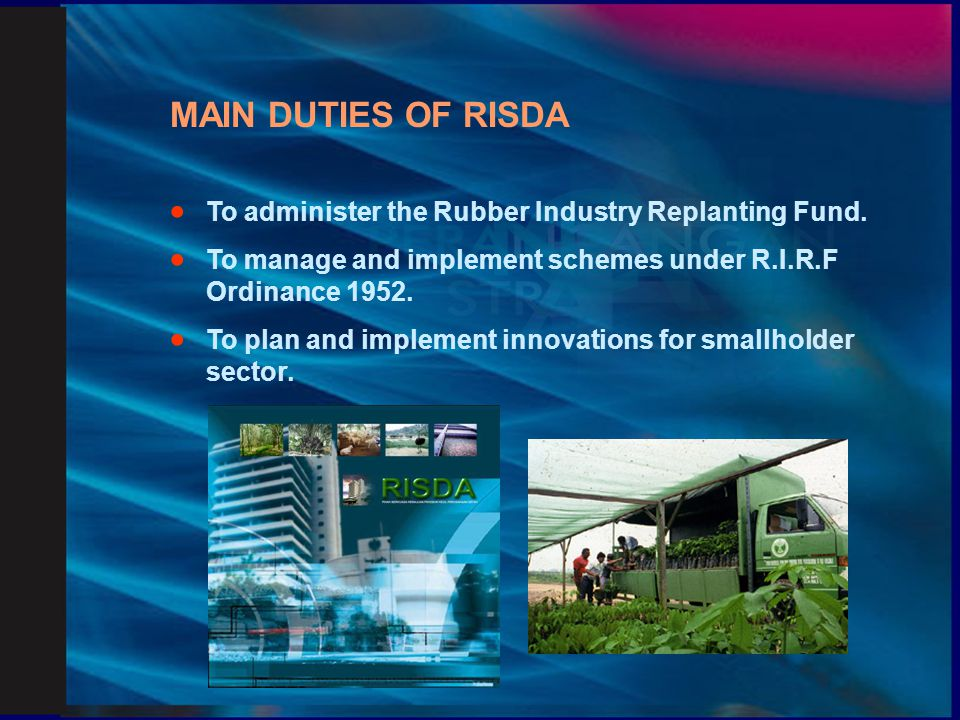 MAIN DUTIES OF RISDA · To administer the Rubber Industry Replanting Fund. · To manage and implement schemes under R.I.R.F Ordinance 1952.