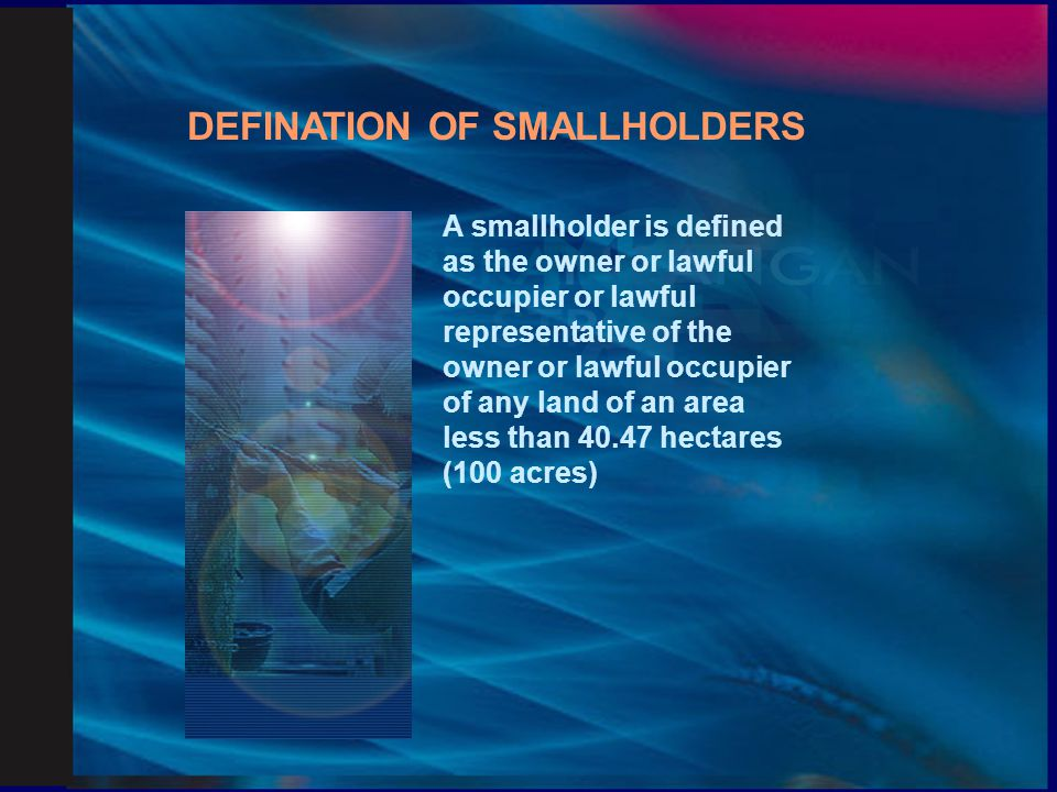 DEFINATION OF SMALLHOLDERS