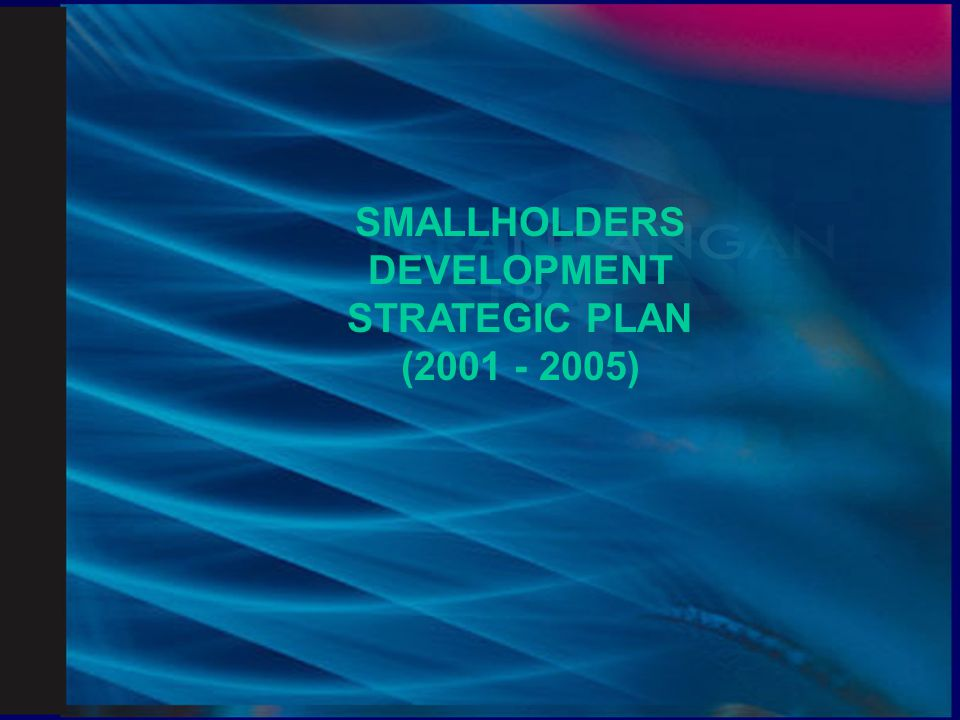 SMALLHOLDERS DEVELOPMENT STRATEGIC PLAN (2001 - 2005)