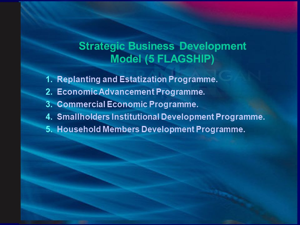 Strategic Business Development Model (5 FLAGSHIP)
