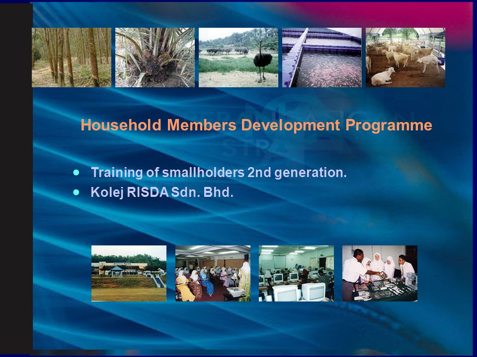 Household Members Development Programme