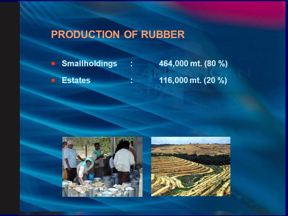 PRODUCTION OF RUBBER · Smallholdings : 464,000 mt. (80 %)