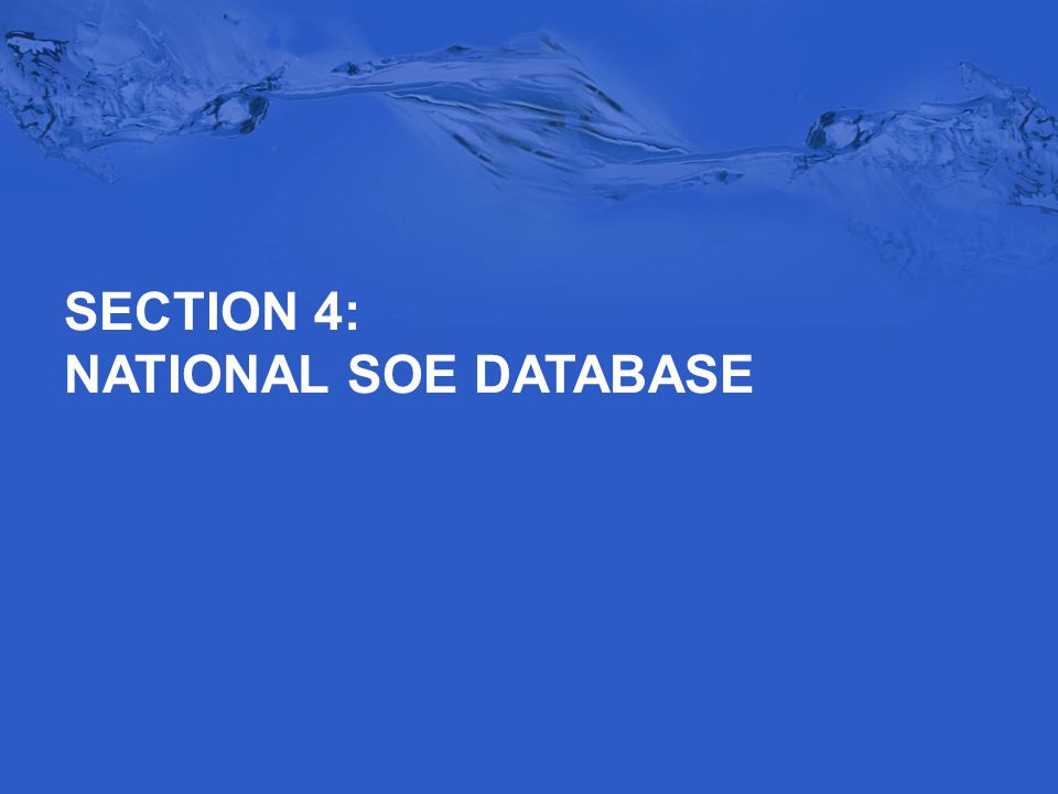 SECTION 4: NATIONAL SOE DATABASE