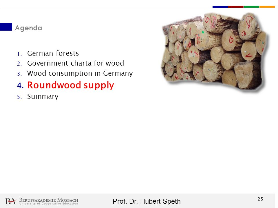 Roundwood supply Agenda German forests Government charta for wood