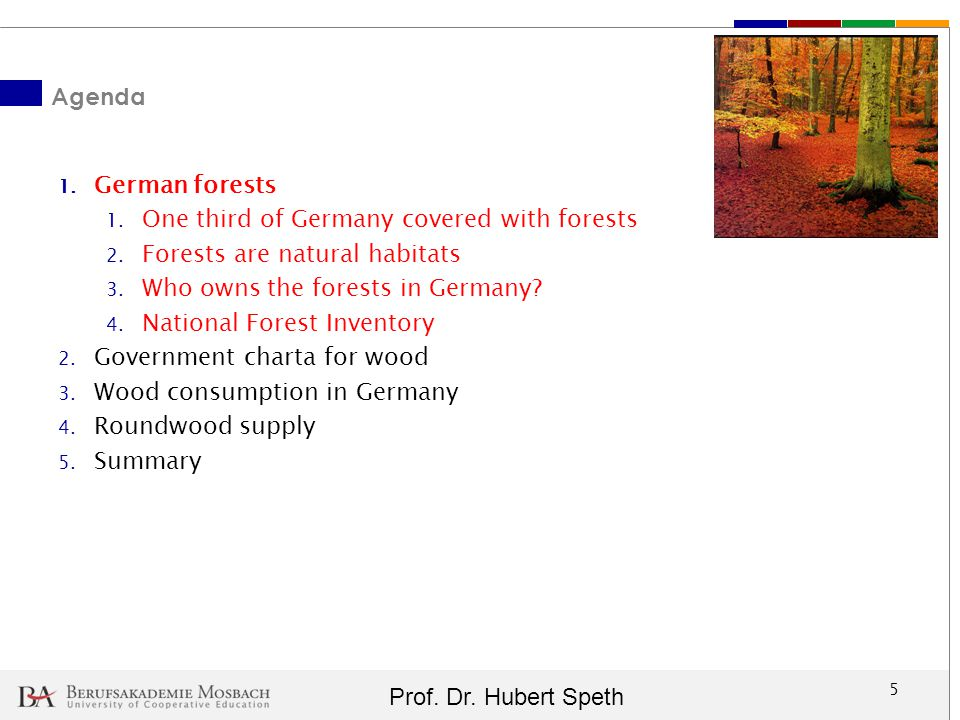 Agenda German forests. One third of Germany covered with forests. Forests are natural habitats. Who owns the forests in Germany
