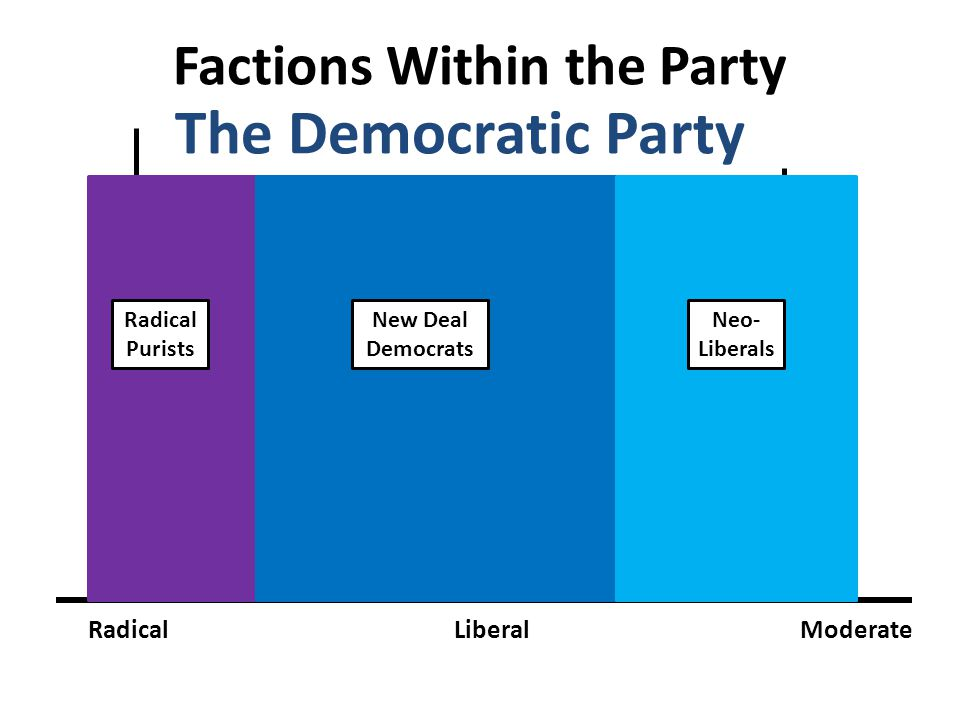 Factions Within the Party