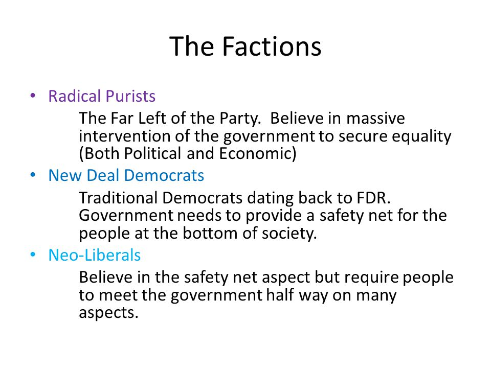 The Factions Radical Purists