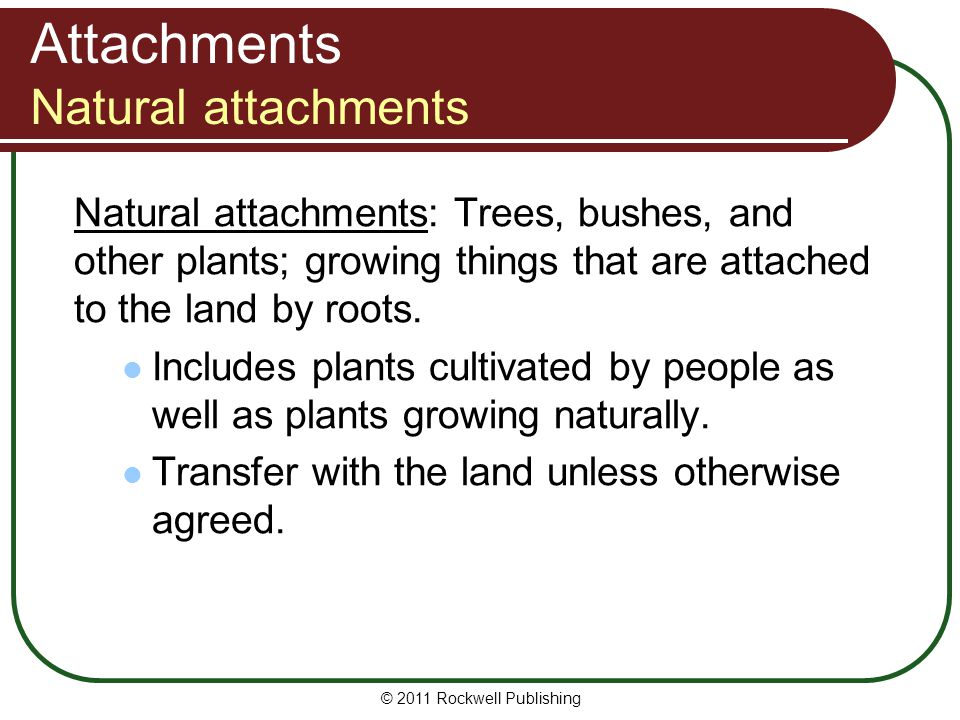 Attachments Natural attachments
