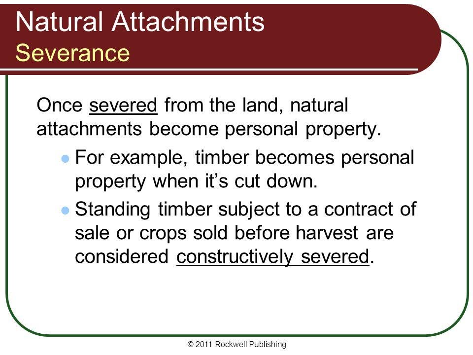 Natural Attachments Severance