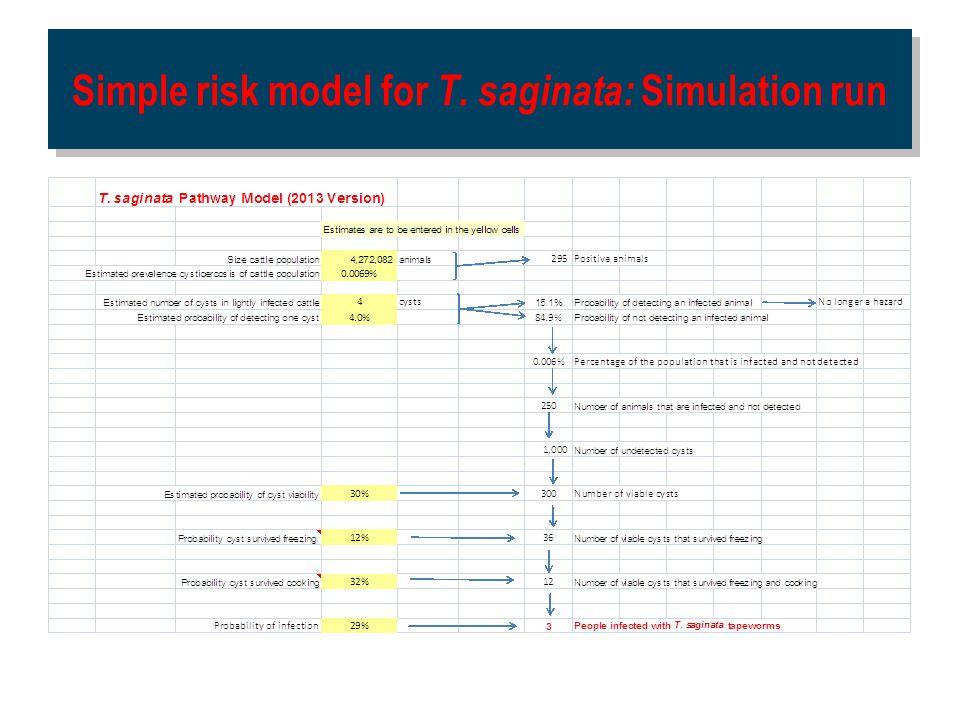 Simple risk model for T. saginata: Simulation run