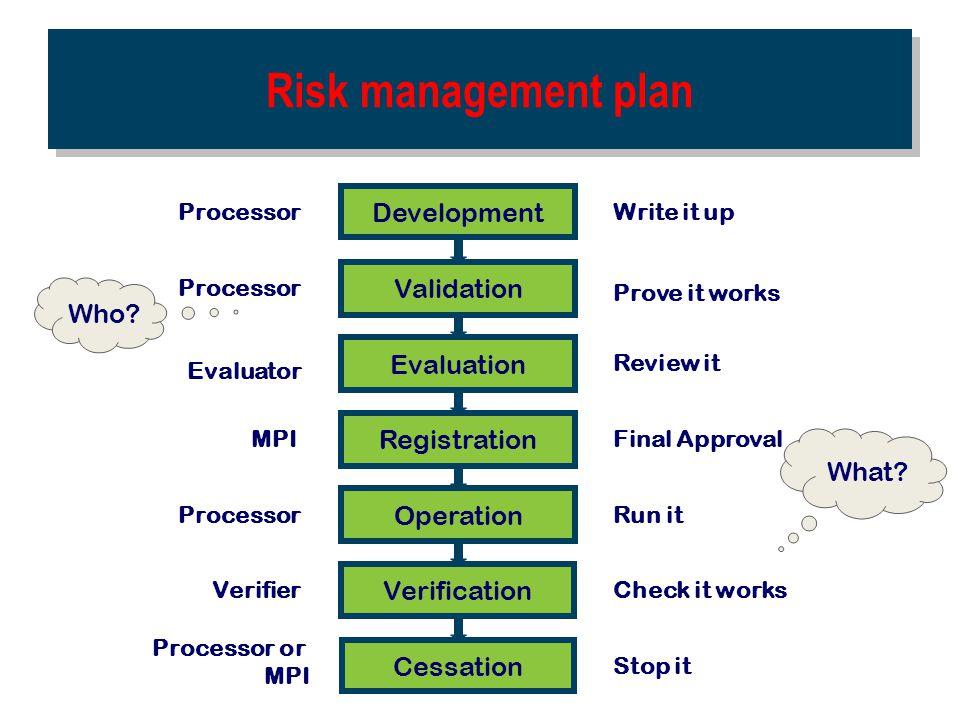 Risk management plan Development Validation Who Evaluation