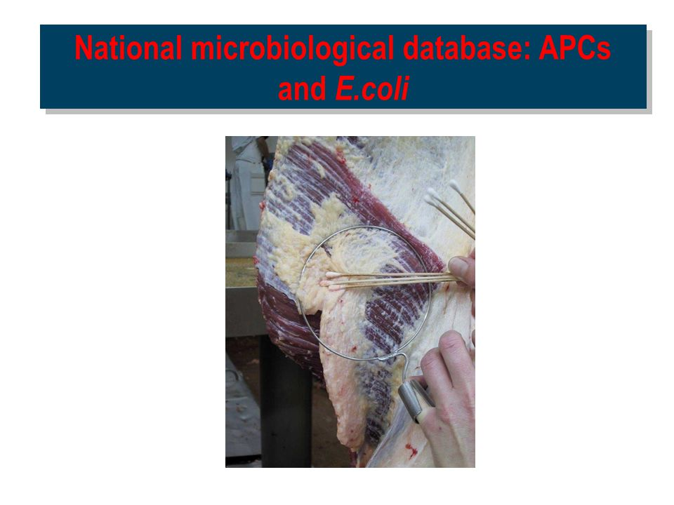National microbiological database: APCs and E.coli