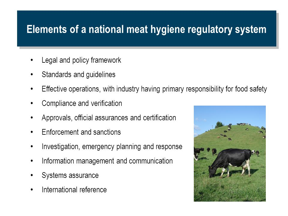 Elements of a national meat hygiene regulatory system