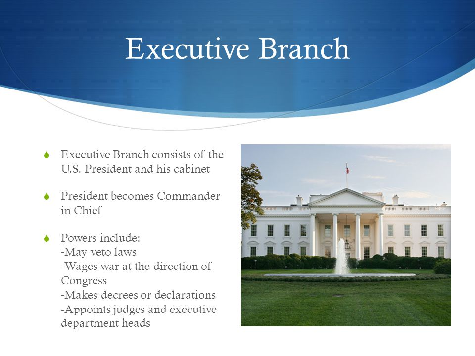 Executive Branch Executive Branch consists of the U.S. President and his cabinet. President becomes Commander in Chief.