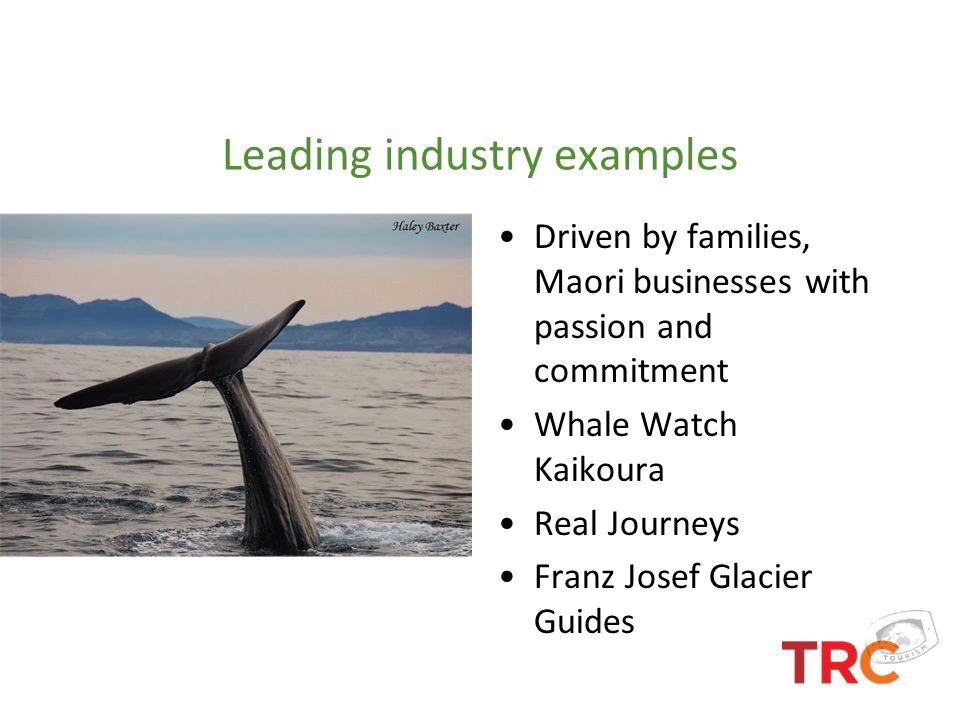 Leading industry examples