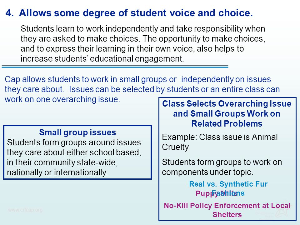4. Allows some degree of student voice and choice.