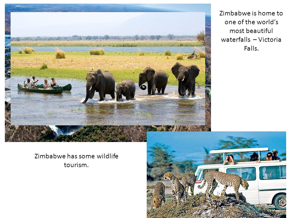 Zimbabwe has some wildlife tourism.