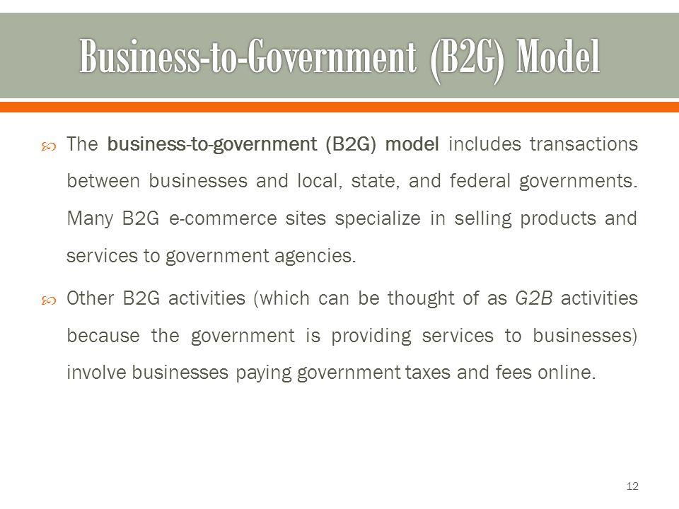 Business-to-Government (B2G) Model