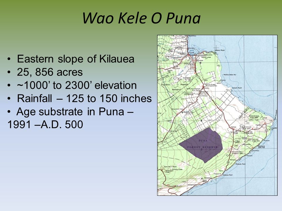 Wao Kele O Puna Eastern slope of Kilauea 25, 856 acres