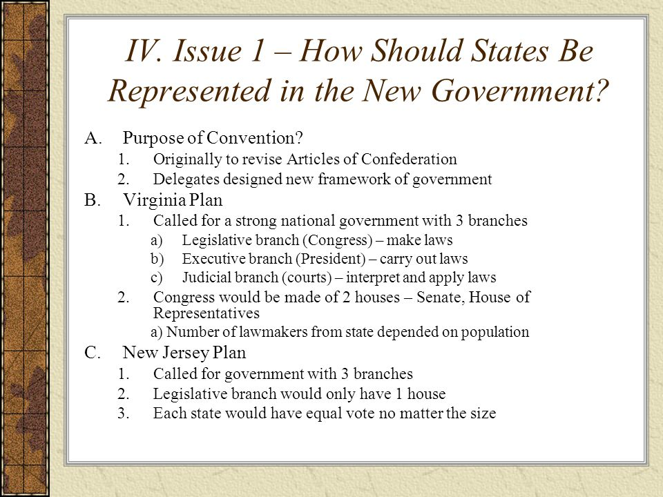 IV. Issue 1 – How Should States Be Represented in the New Government