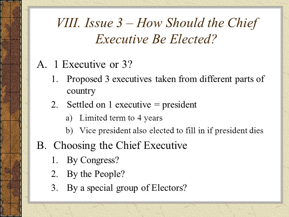 VIII. Issue 3 – How Should the Chief Executive Be Elected