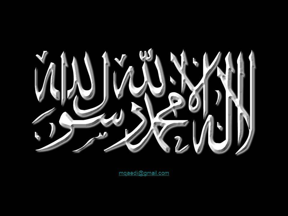 mqaedi@gmail.com