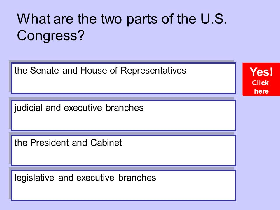 What are the two parts of the U.S. Congress