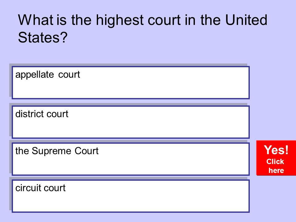 What is the highest court in the United States