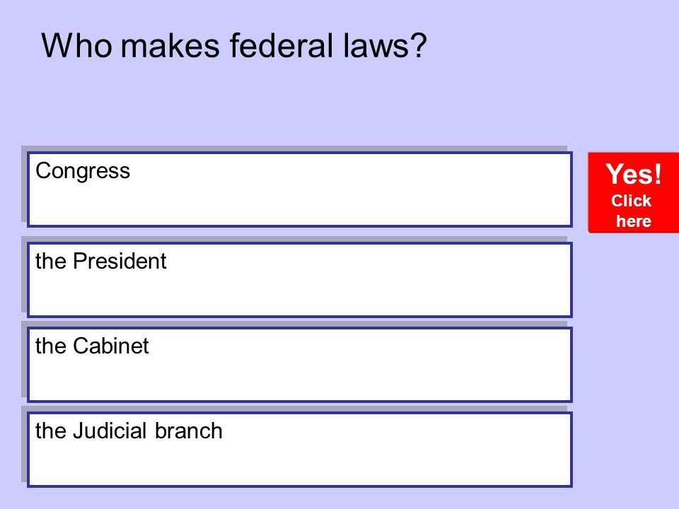 Who makes federal laws Yes! Congress the President the Cabinet