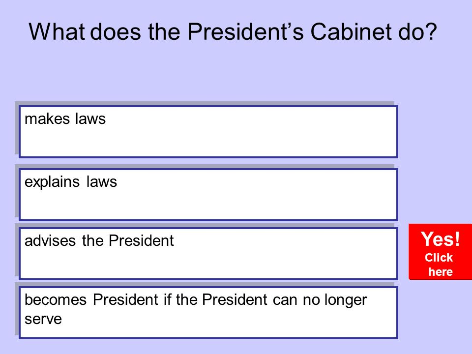 What does the President's Cabinet do