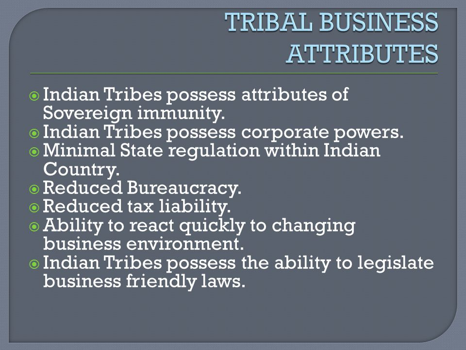 TRIBAL BUSINESS ATTRIBUTES