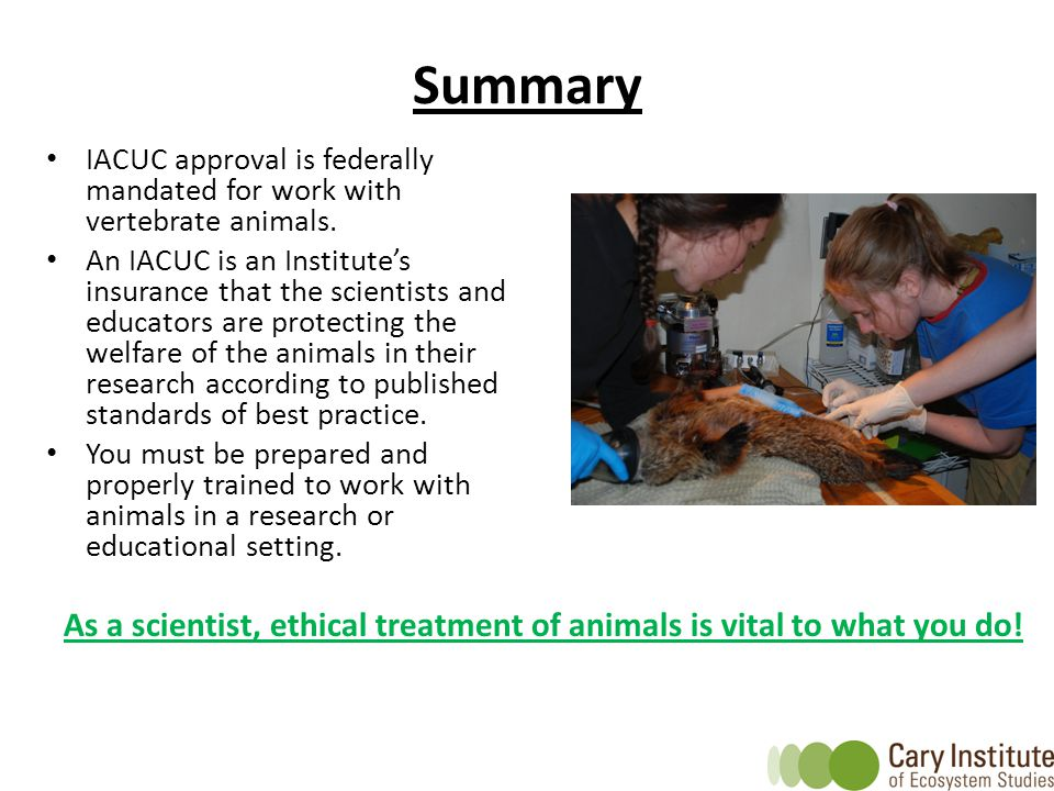 Summary IACUC approval is federally mandated for work with vertebrate animals.