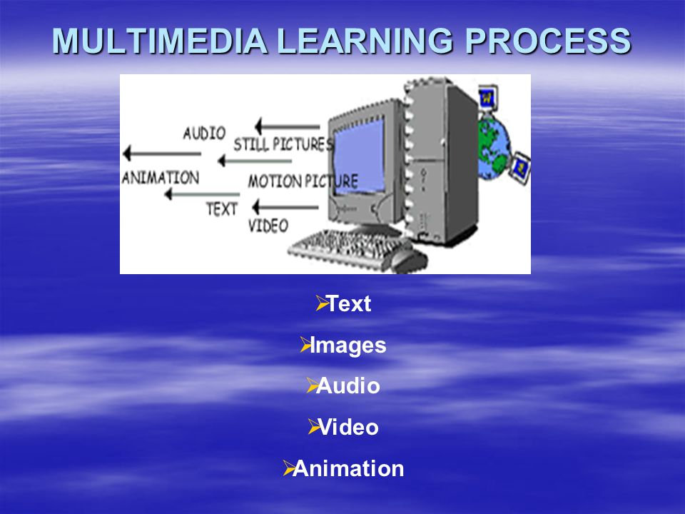 MULTIMEDIA LEARNING PROCESS