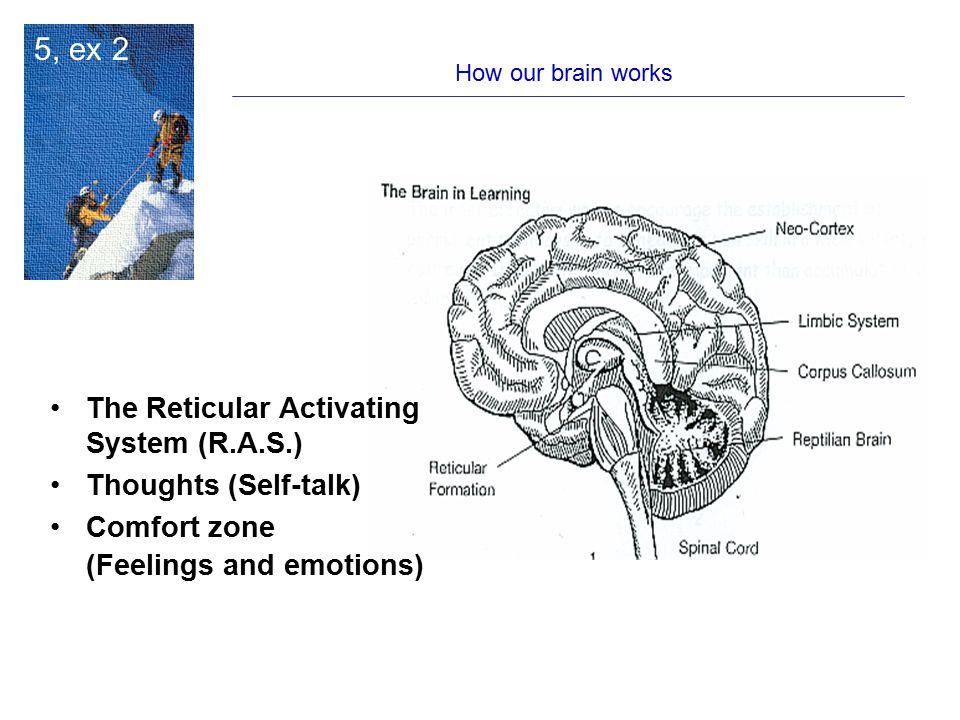 5, ex 2 The Reticular Activating System (R.A.S.) Thoughts (Self-talk)