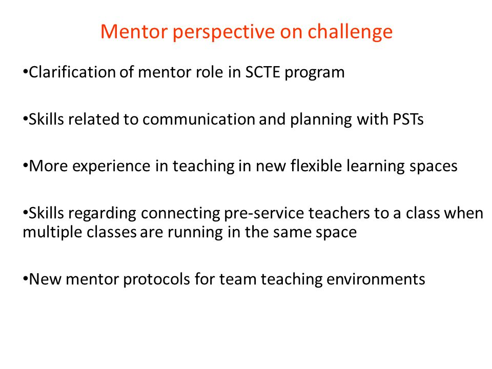 Mentor perspective on challenge