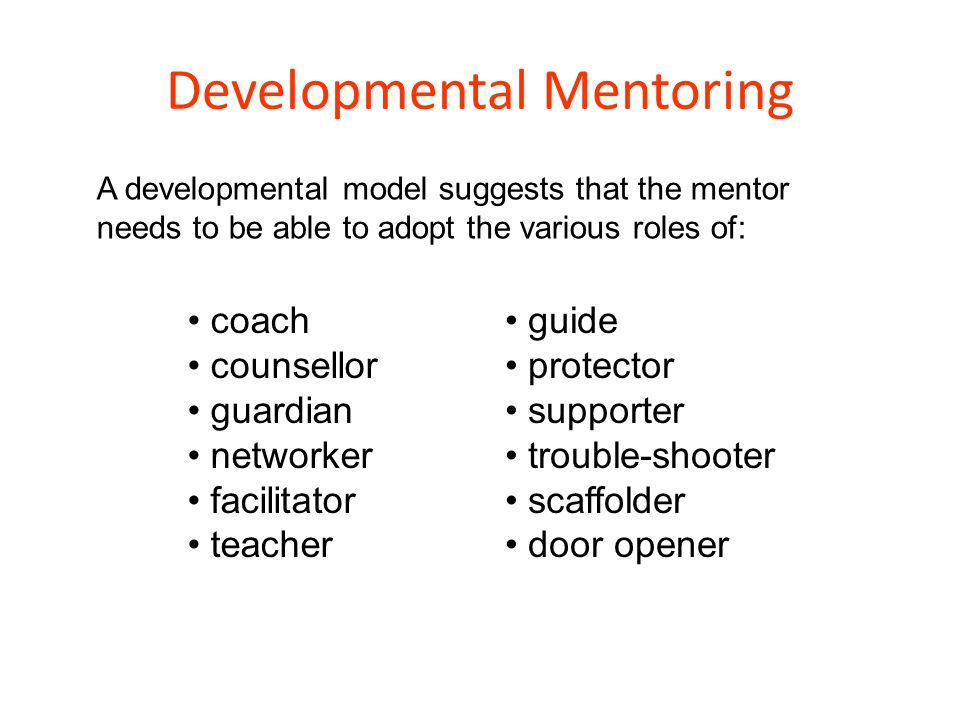 Developmental Mentoring
