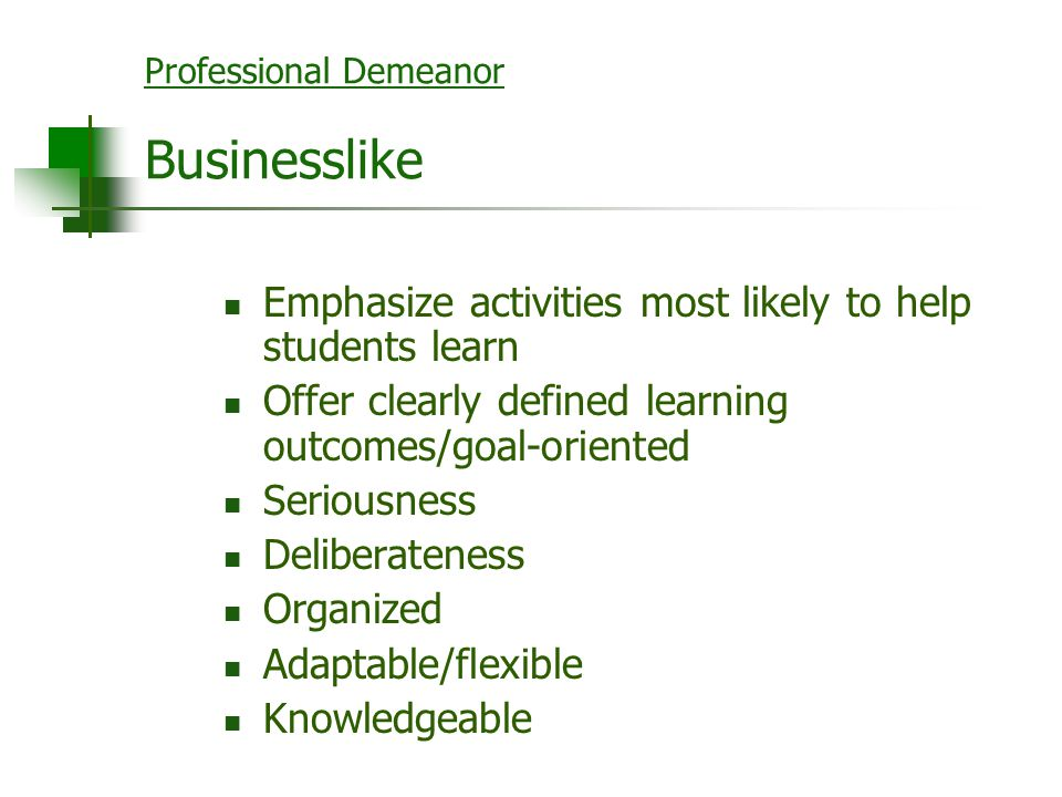 Professional Demeanor Businesslike