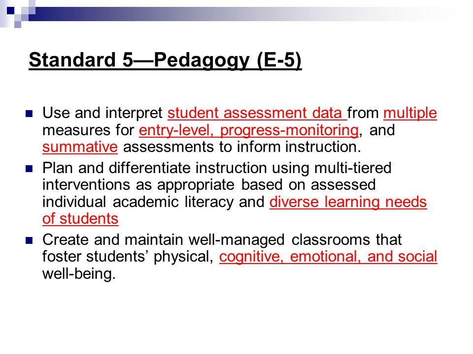 Standard 5—Pedagogy (E-5)