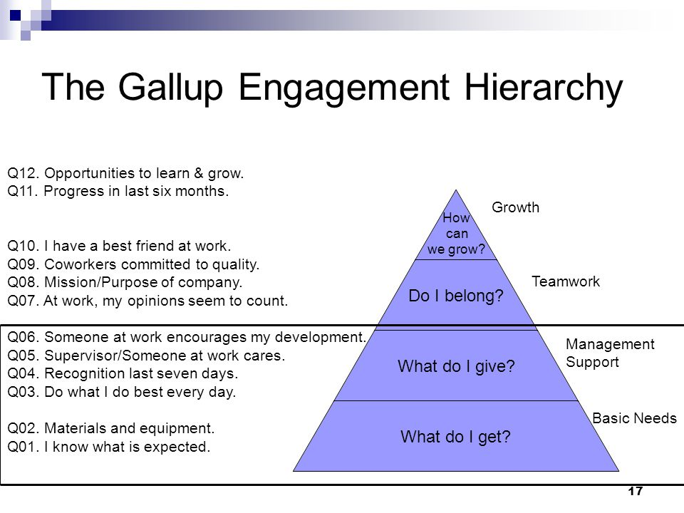 The Gallup Engagement Hierarchy