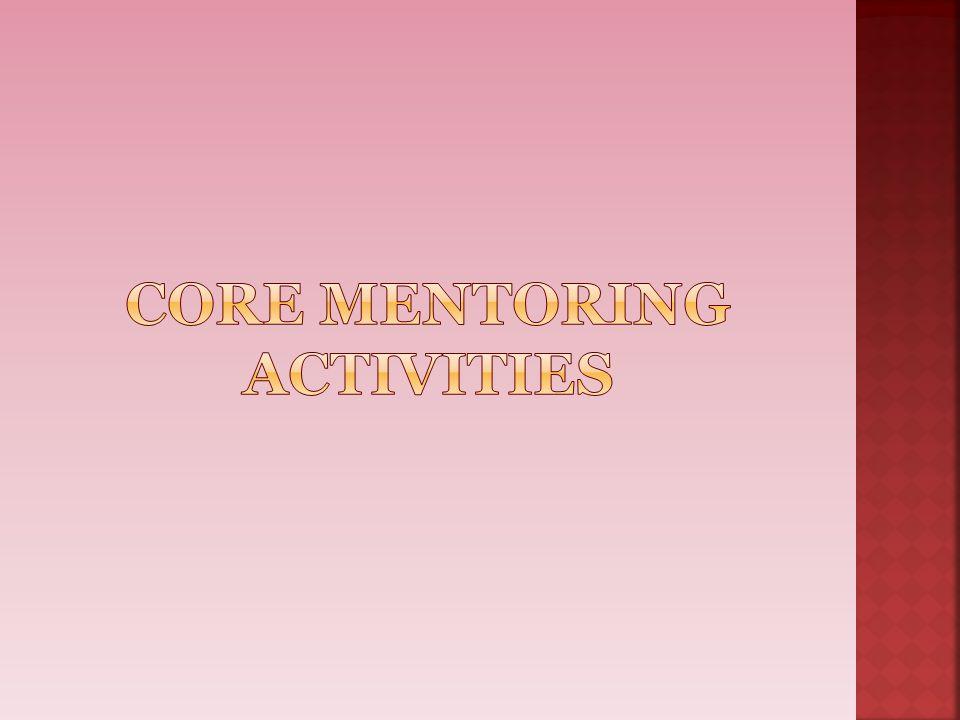 Core mentoring activities
