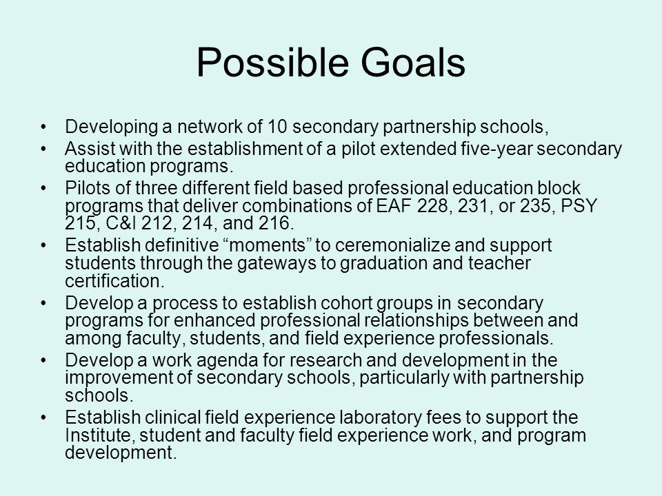 Possible Goals Developing a network of 10 secondary partnership schools,