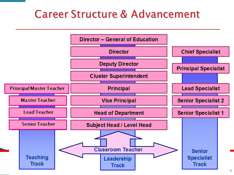 Career Structure & Advancement